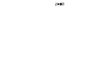 ISANI INDIA